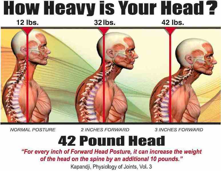 how-heavy-is-your-head img